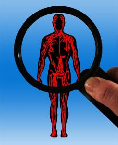 Flere almindelige jkosttilskud har vist sig i stand til at mindske karstivhed, som er en tilstand der forudsiger hjerte-karsygdom.