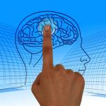 Pixabay_Brain