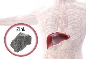 Zink_lever