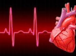 Hjertepuls