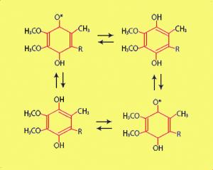 Q10_molecules