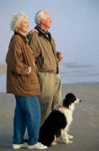 Senior couple at the beach with their dog
