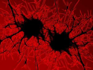 Pixabay_bacteria